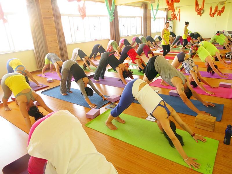 【瑜伽健身||瑜伽班】哪家好,千万别错过【金水合瑜伽】