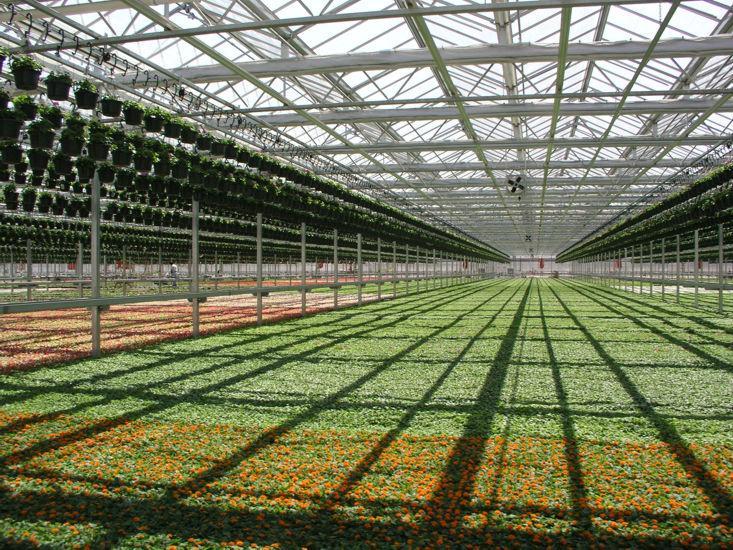 生态采摘园设计_温室大棚价格范围