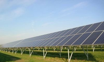 太阳能电站围网供货厂家-厦门成盛-可靠的太阳能电站围网供应商