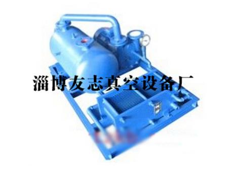 贊贊:江蘇真空泵生產廠家《友志》山東真空泵生產廠家