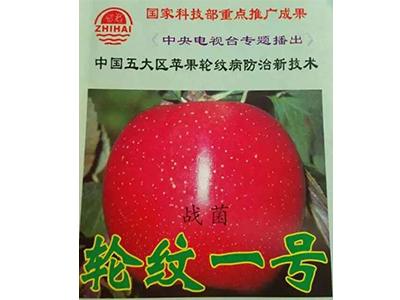 陕西生物有机肥_大连东方绿康销量好的生物有机肥出售