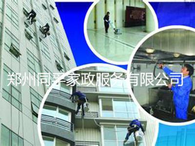 服务好的住宅清洁-郑州同孚家政-靠谱的住宅清洗公司
