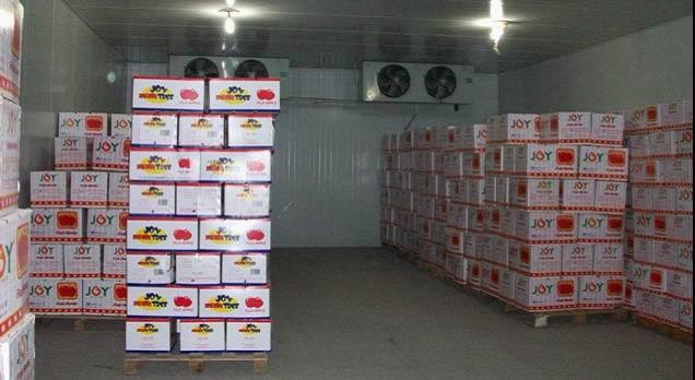 厂家直销福建制冷设备-福州水果保鲜库