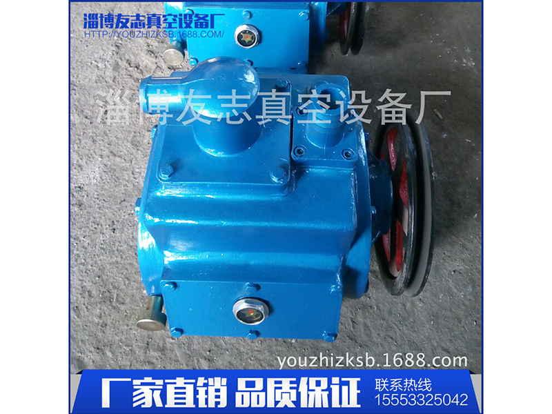 看看:淄博羅茨真空泵機組《友志》山東羅茨真空泵機組