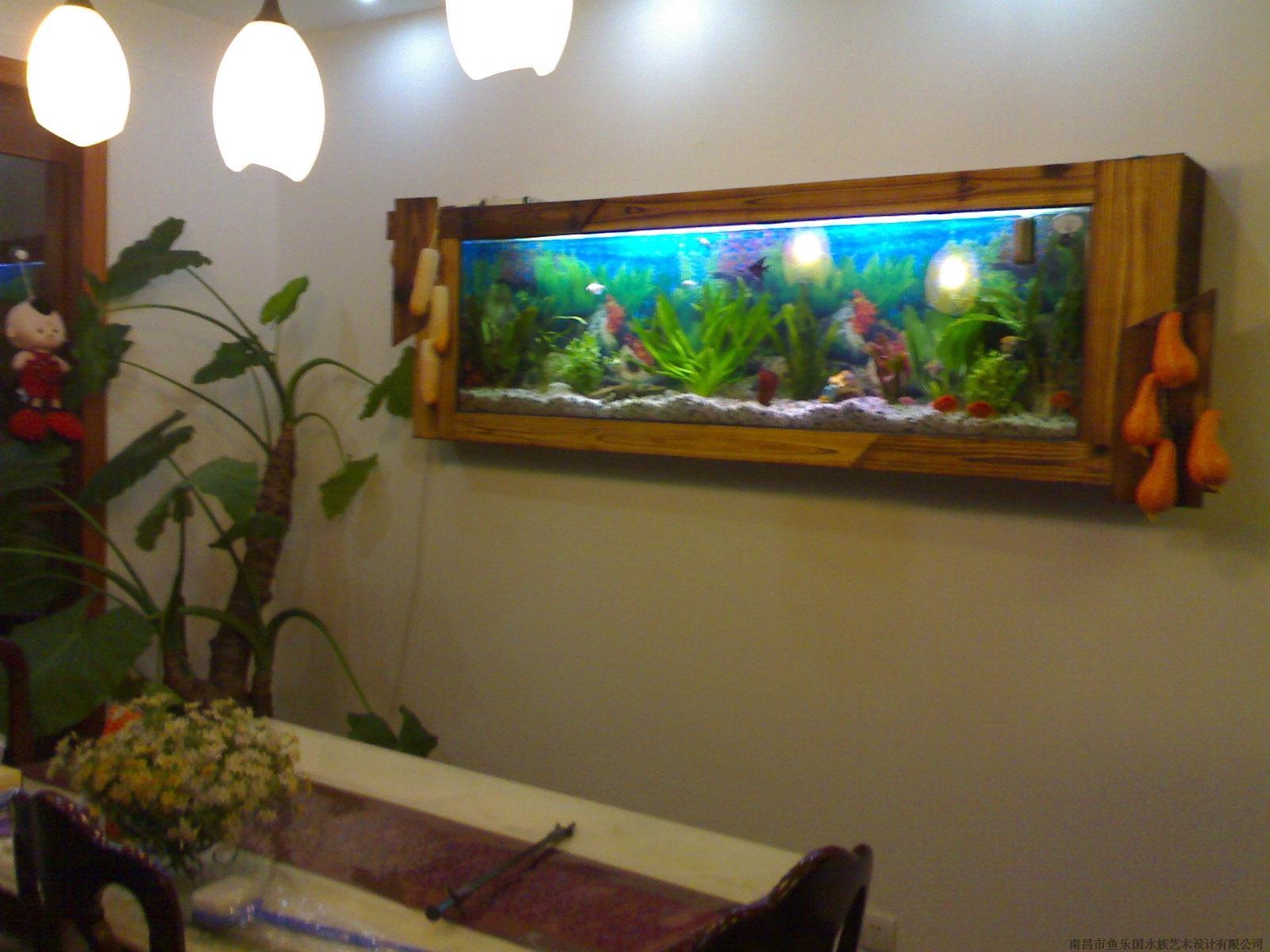 精美的嵌入式魚缸水之戀水族制品優惠供應-生態魚缸廠家