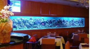 相城镶嵌式生态鱼缸_哪里可以买到精美的壁挂鱼缸