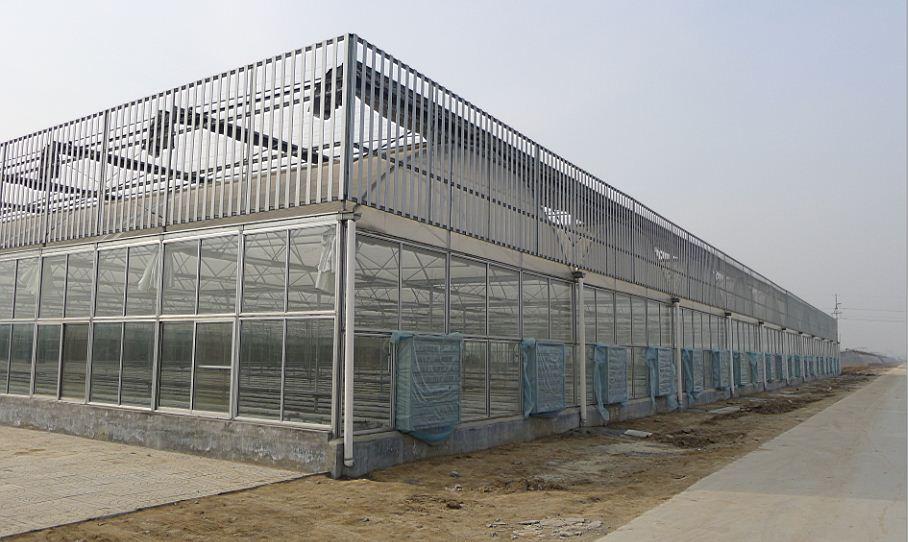 阳光板温室大棚建设——[良正温室]日光温室设计建造