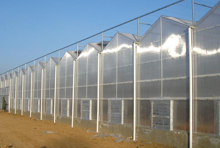 西北智能温室建设 智能温室大棚建造费用