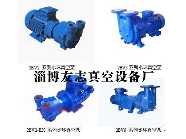 《友志》江蘇2bv水環式真空泵,浙江2bv水環式真空泵