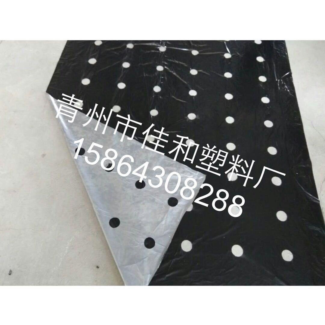 打孔地膜厂哪里有供应价位合理的打孔地膜-黑白打孔地膜针孔地膜