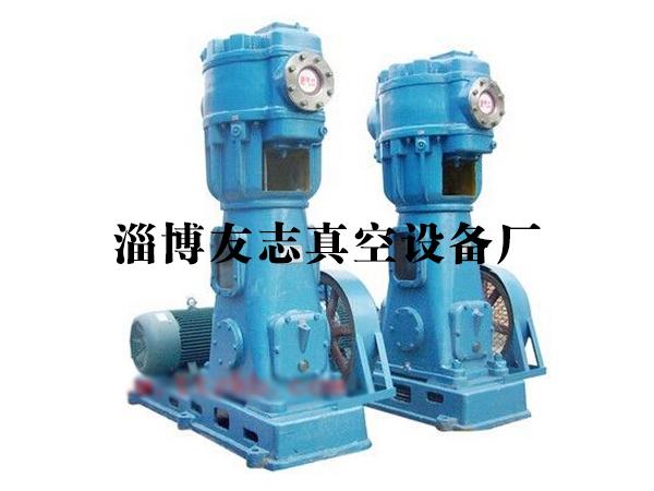 友志《淄博、江蘇、山東》立式真空泵價格,無油立式真空泵