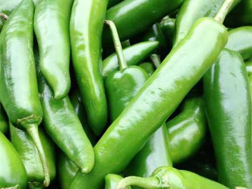 东莞高品质东莞蔬菜哪里买 优惠的新鲜蔬菜