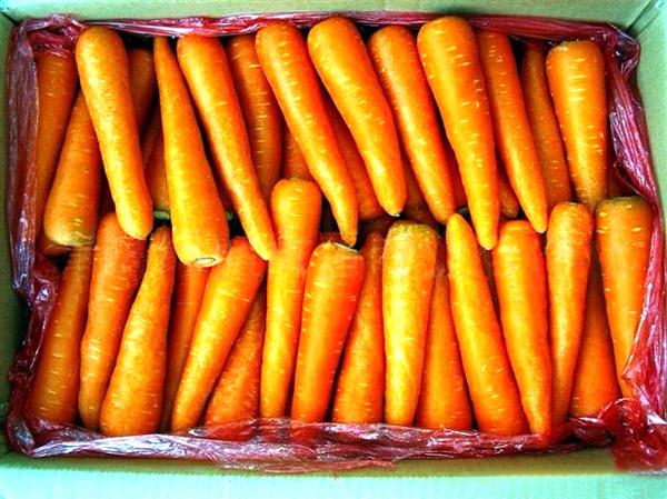 莞城新鲜蔬菜-东莞销量好的东莞蔬菜批发供应