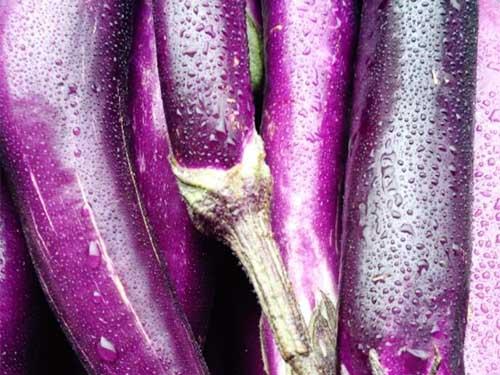 东莞哪里有提供可靠的蔬菜配送,新鲜蔬菜配送