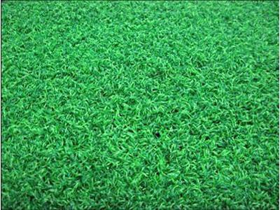 兰州新品人造草坪供销 青海环氧地坪工程