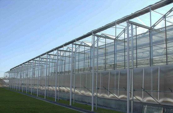 专业温室大棚厂家,温室大棚建造