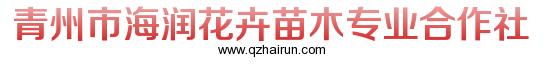 青州市海润花卉苗木专业合作社