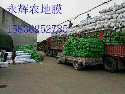 大量供應優質的防塵網|防塵網批發