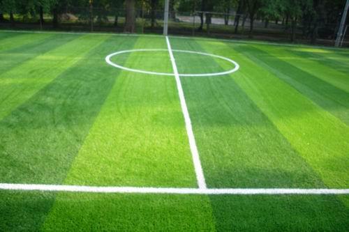 人造草坪供货厂家-想要品质好的人造草坪就来金艺塑胶工程