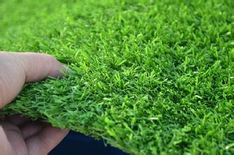 辽宁人造草坪-哪里能买到成活率高的人造草坪
