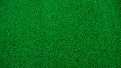 人造草坪价格量大从优 朝阳人造草坪