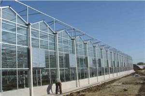 值得一看:阳光玻璃温室承建//阳光玻璃温室报价