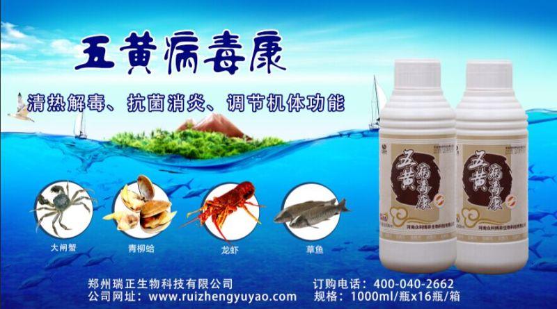 鱼虾蟹药批发价格如何_郑州名声好的正康元五黄病毒康供应商推荐