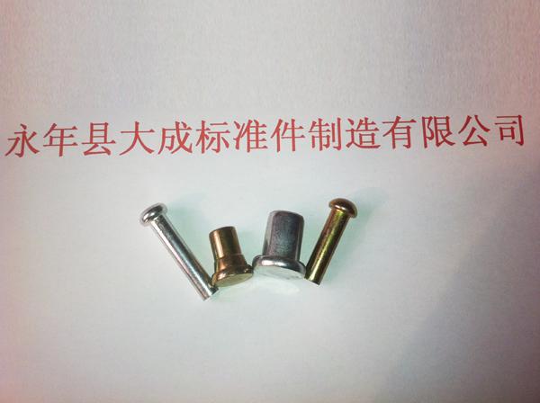 好听的天路大成铁铆钉厂家直接供应价格低 加工铁铆钉规格