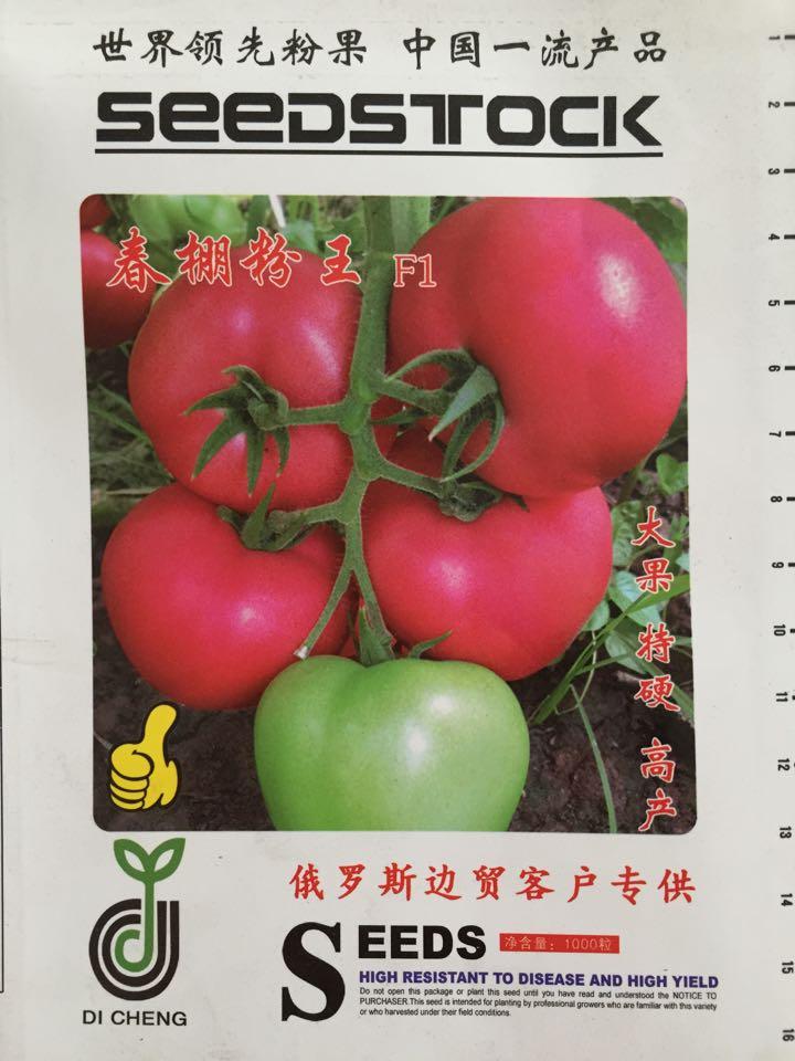 番茄-【度娘真是热心肠,请帮《绿兴》上头条】-寿光绿兴
