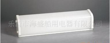 价格合理的荧光舱顶灯-大量供应性价比高的荧光舱顶灯