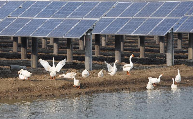 酒泉太阳能光伏厂家 新品光伏发电市场价格