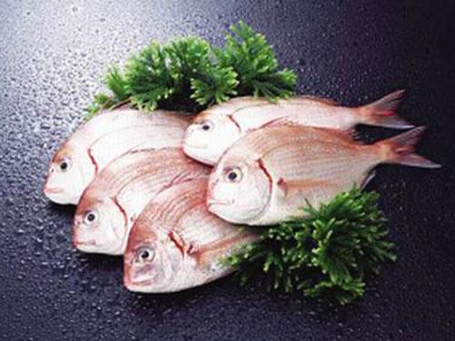 供应东莞性价比高的东莞冻肉-东莞虎门蔬菜批发市场
