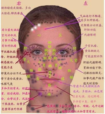 中医舌面象仪制造|高性价中医舌面象仪供销