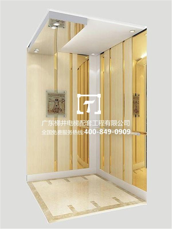 广东梯井-专业的电梯供应商——三菱电梯工程