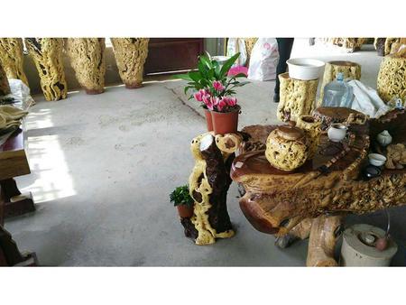棗木花架定制哪家便宜|熱賣的棗木花架供應