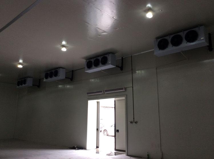 兰州恒温加工冷库|规模大的冷库厂家推荐