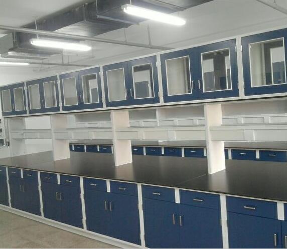 喀什全木通风柜-兰州质量好的实验室设备哪里买