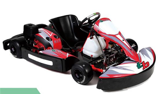 tbkart R15运动版,高级会员车厂家哪家好-思明tbkartR15运动版,高级会员车
