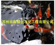 苏景观鱼池净化过滤设备找哪家好,专业的鱼池水处理过滤净化推荐