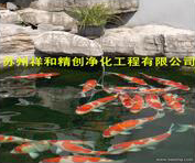 北京市高科技处理鱼池水发绿青苔藻类,给你一个良好的环境。
