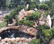 江苏别墅单位鱼池水净化,祥和精创工程,科学技术