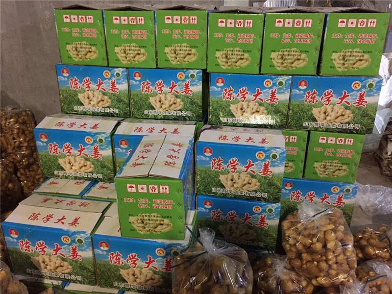 划算的大姜哪里有卖-蔬菜购销
