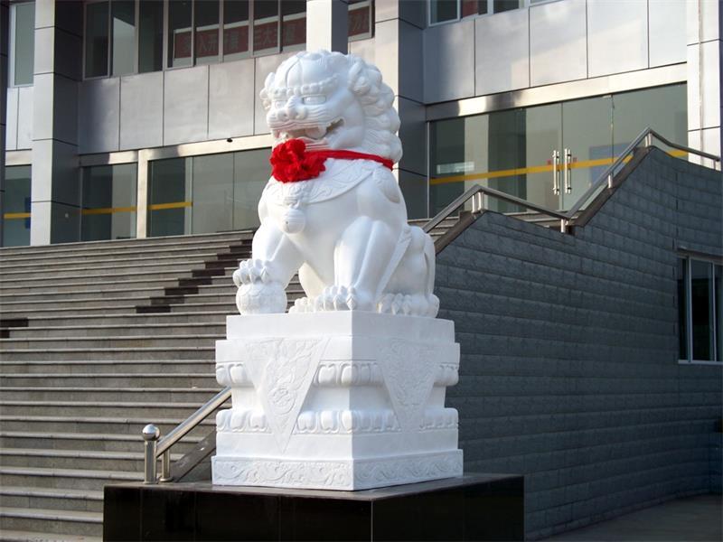 优质汉白玉大象-为您推荐专业的石狮子雕刻服务