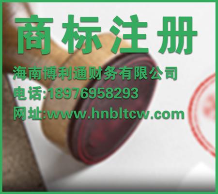 海南工商注册公司