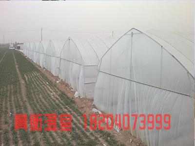 鸡西大棚薄膜-辽宁地区专业的大棚薄膜