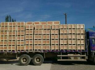 专业木质包装箱价位_定西华宇提供销量好的木质包装箱