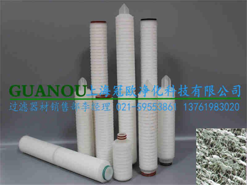专业聚四氟乙烯滤芯|上海哪里有卖得好的PTFE聚四氟乙烯膜折叠滤芯