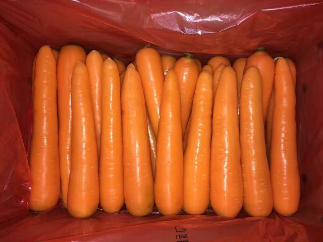 山西胡萝卜价格-长期供应胡萝卜