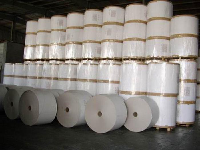阳光纸销售|哪里买高性价比的文化印刷用纸