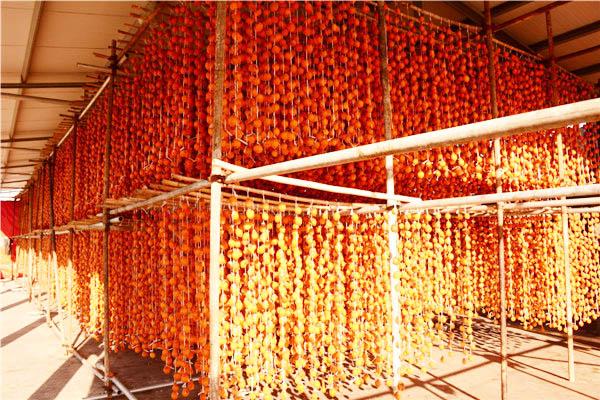 盒装柿饼-大地食品专业供应柿饼